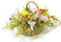 posies in baskets pic